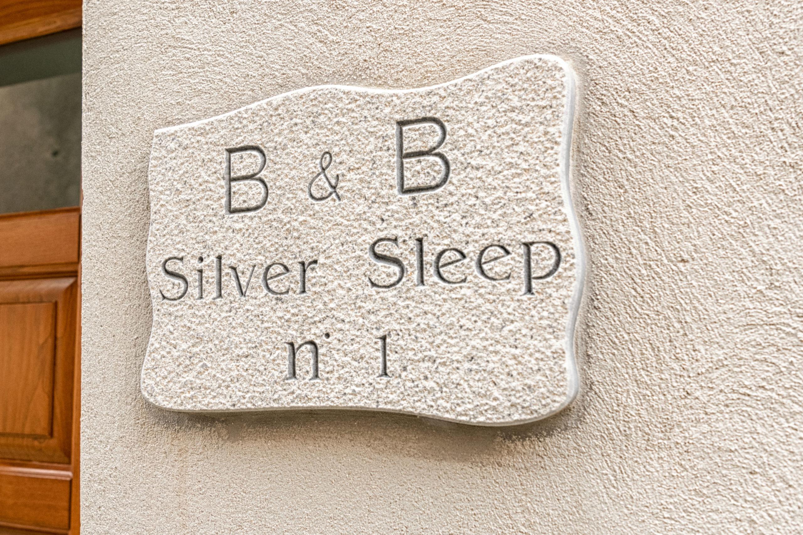 B&B Silver Sleep